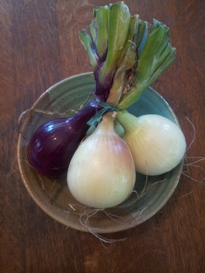 three raw onions