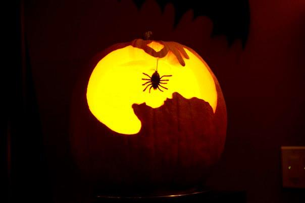 halloween pumpkin eating spider