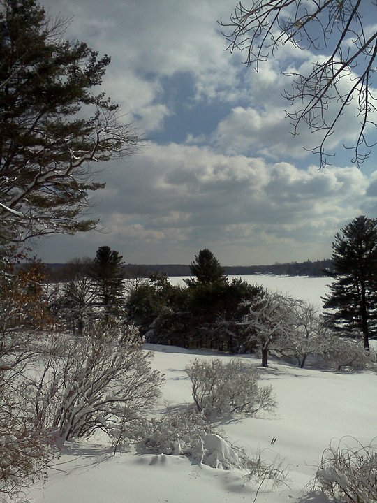 Snow covered view to the lake