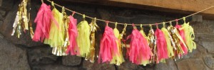 cropped-shower-tassle-garland1.jpg