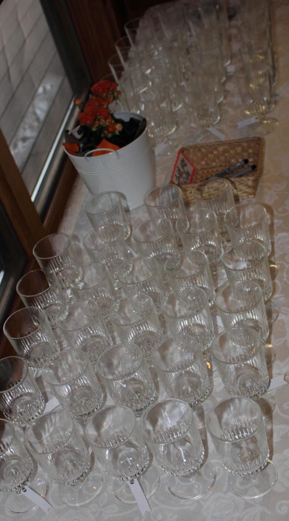 Shower Wine Glasses