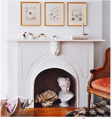 coral and bust in fireplace