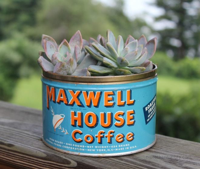 coffee-can-succulent logo