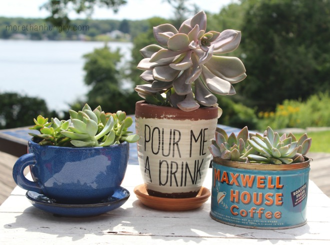 drink-planters logo